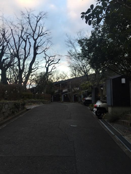 写真 2016-01-26 17 00 52