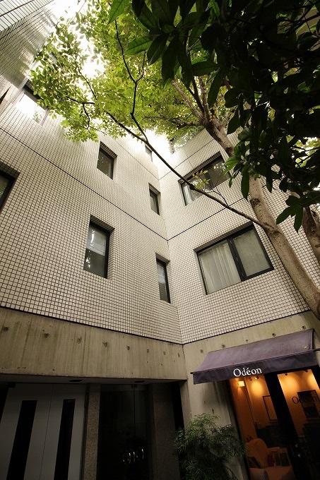 エンジュがそよぐ御蔭通のマンション 京都市左京区北白川