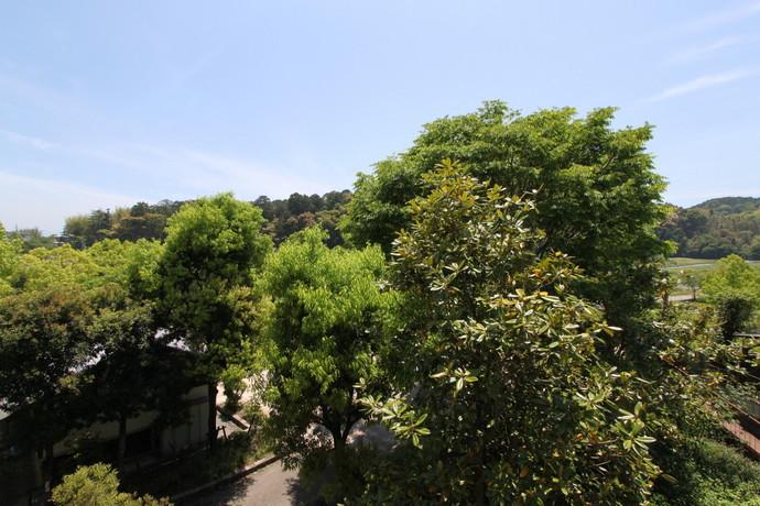 大きな公園面す 大津市和邇中 新築住宅